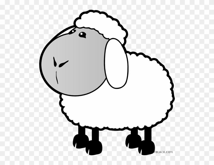 Sheep Animal Free Black White Clipart Images Clipartblack.