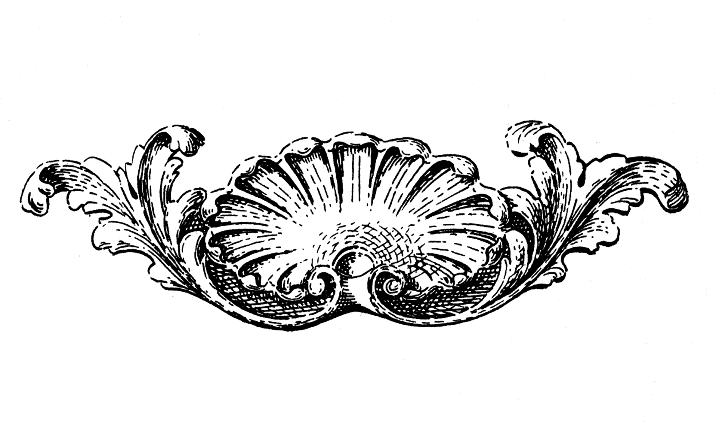 10 Ornamental Shell Clipart Images.