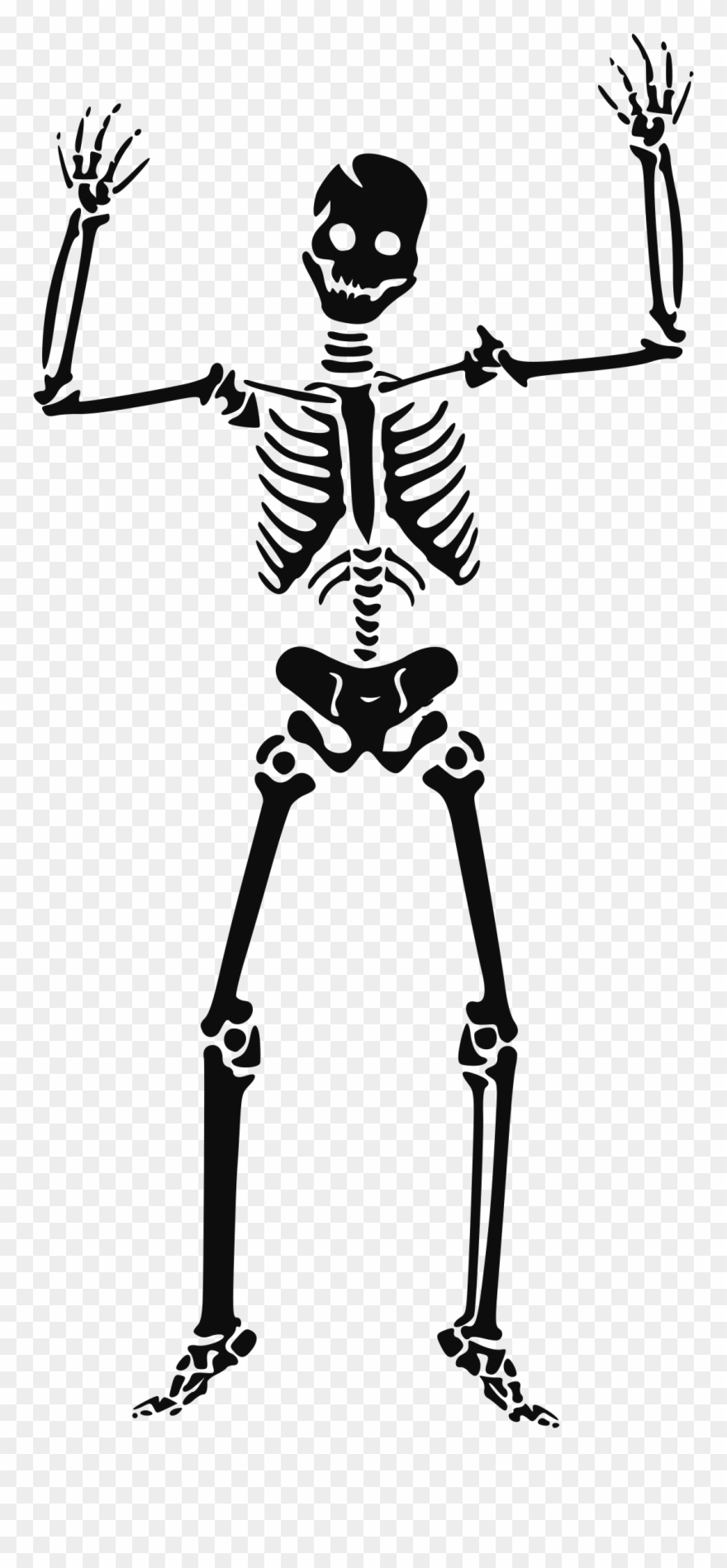 Skeleton Clipart Transparent.