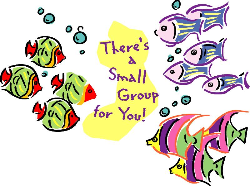 Small Group Fish.
