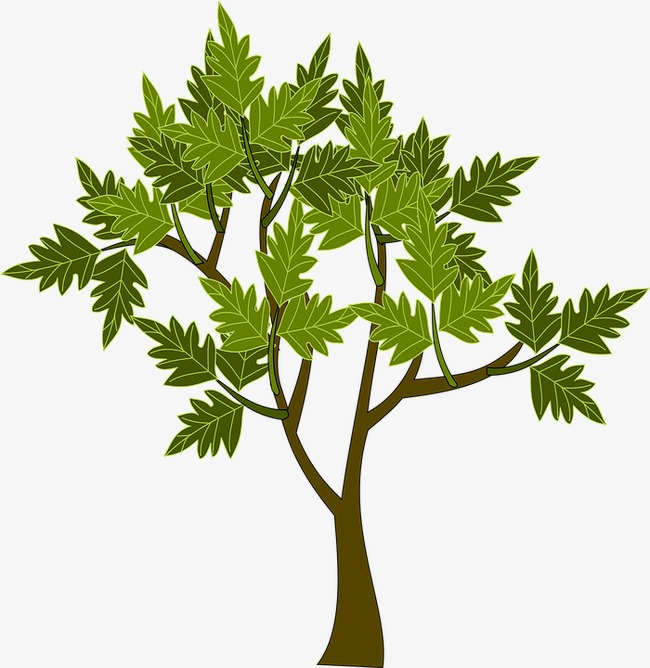 Small tree clipart 6 » Clipart Station.