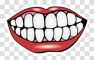 Mouth smile transparent background PNG clipart.