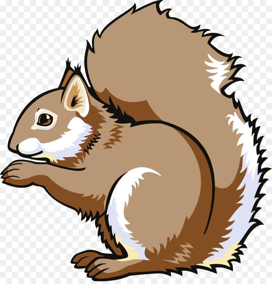 Squirrel Cartoon png download.