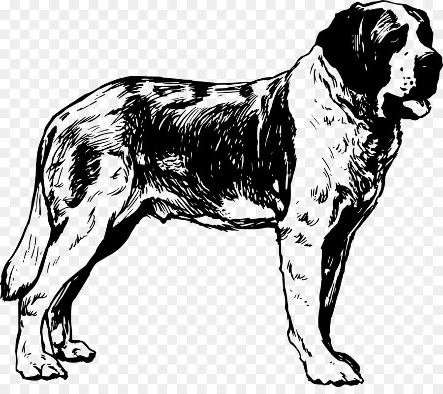 Bulldog Drawing clipart.