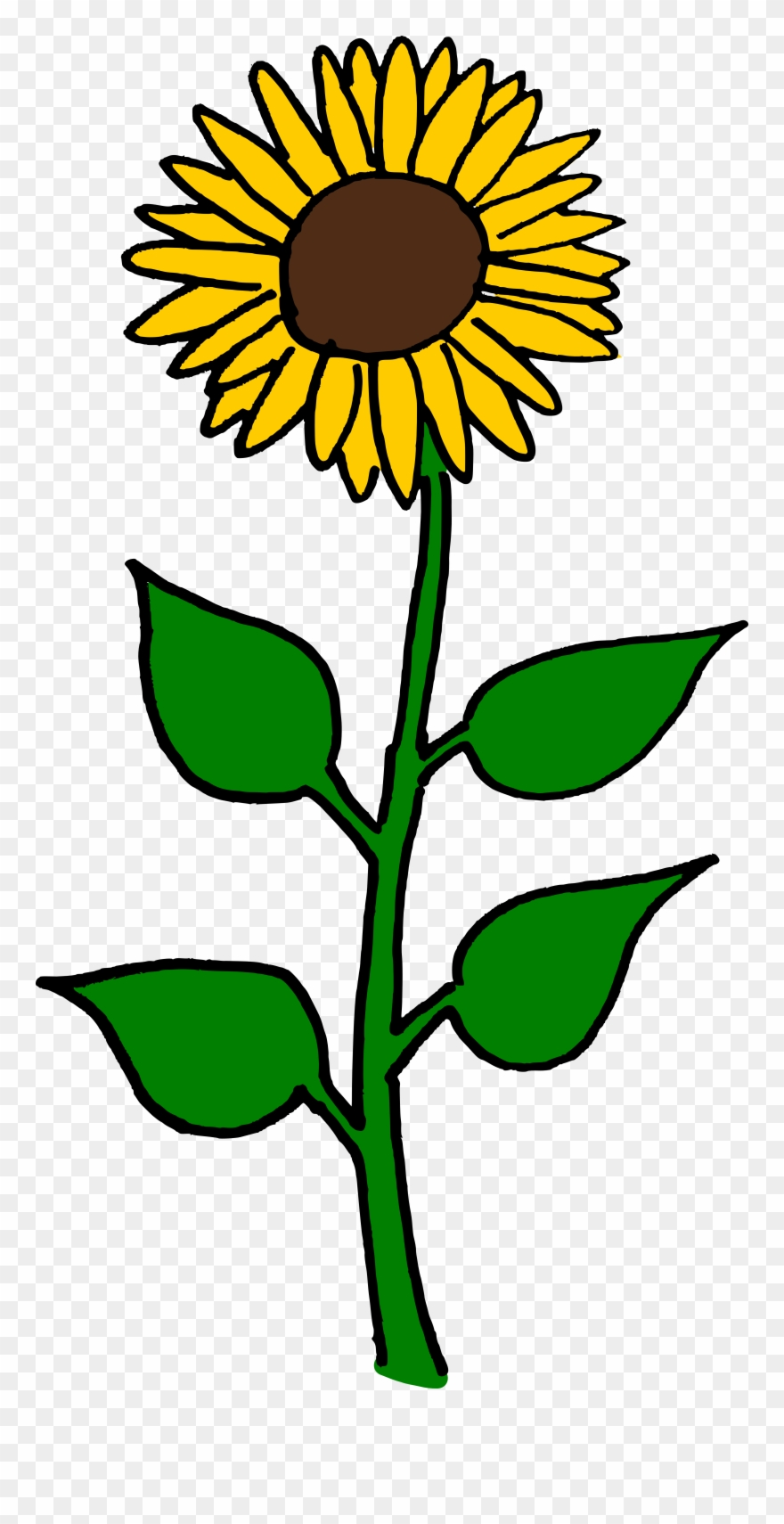 Flower Clipart Sunflower.