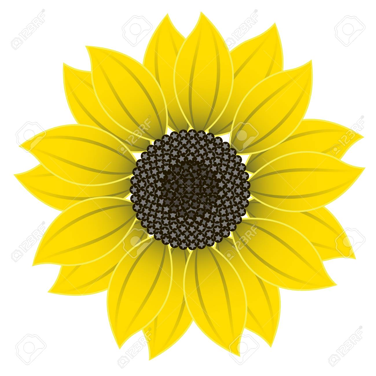 Vector clipart Sunflower Flower. A hand.