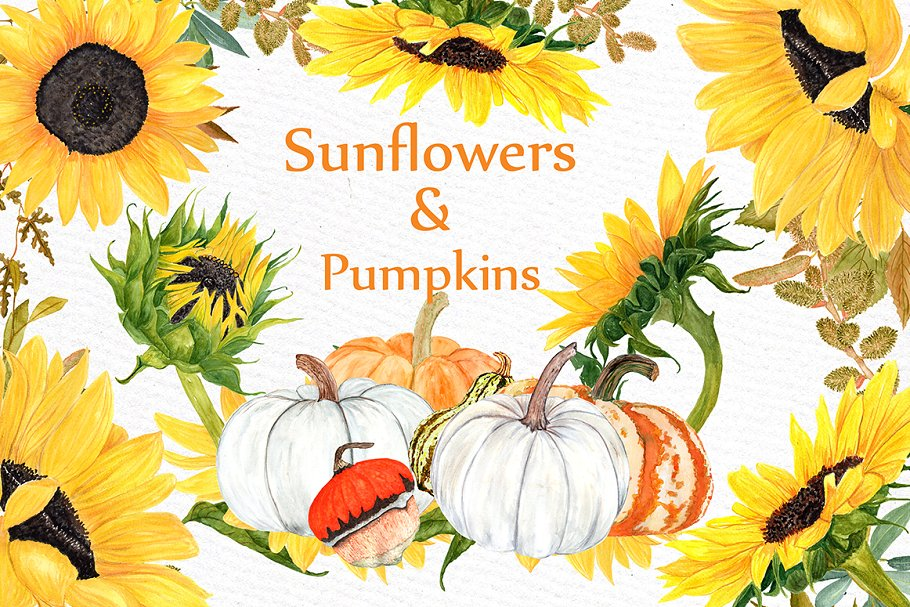 Watercolor Sunflower clipart ~ Illustrations ~ Creative Market.