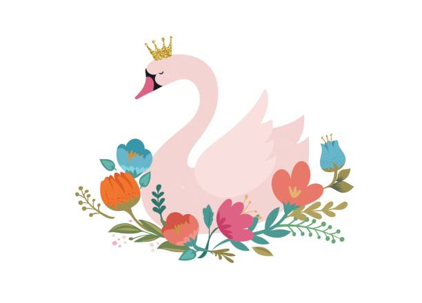 Best Swan Illustrations, Royalty.