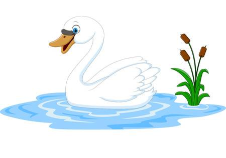9,032 Swan Stock Vector Illustration And Royalty Free Swan Clipart.