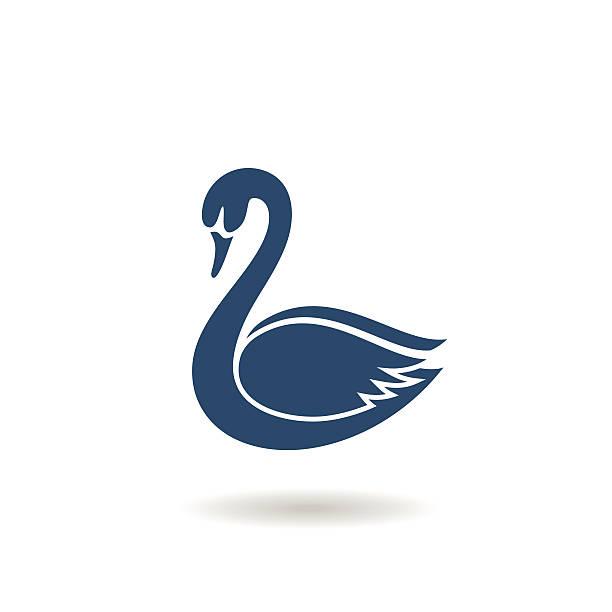 Best Swan Illustrations, Royalty.