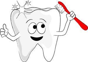 clip art of tooth or teeth.