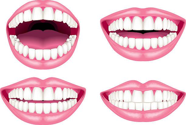 Clipart teeth 5 » Clipart Station.