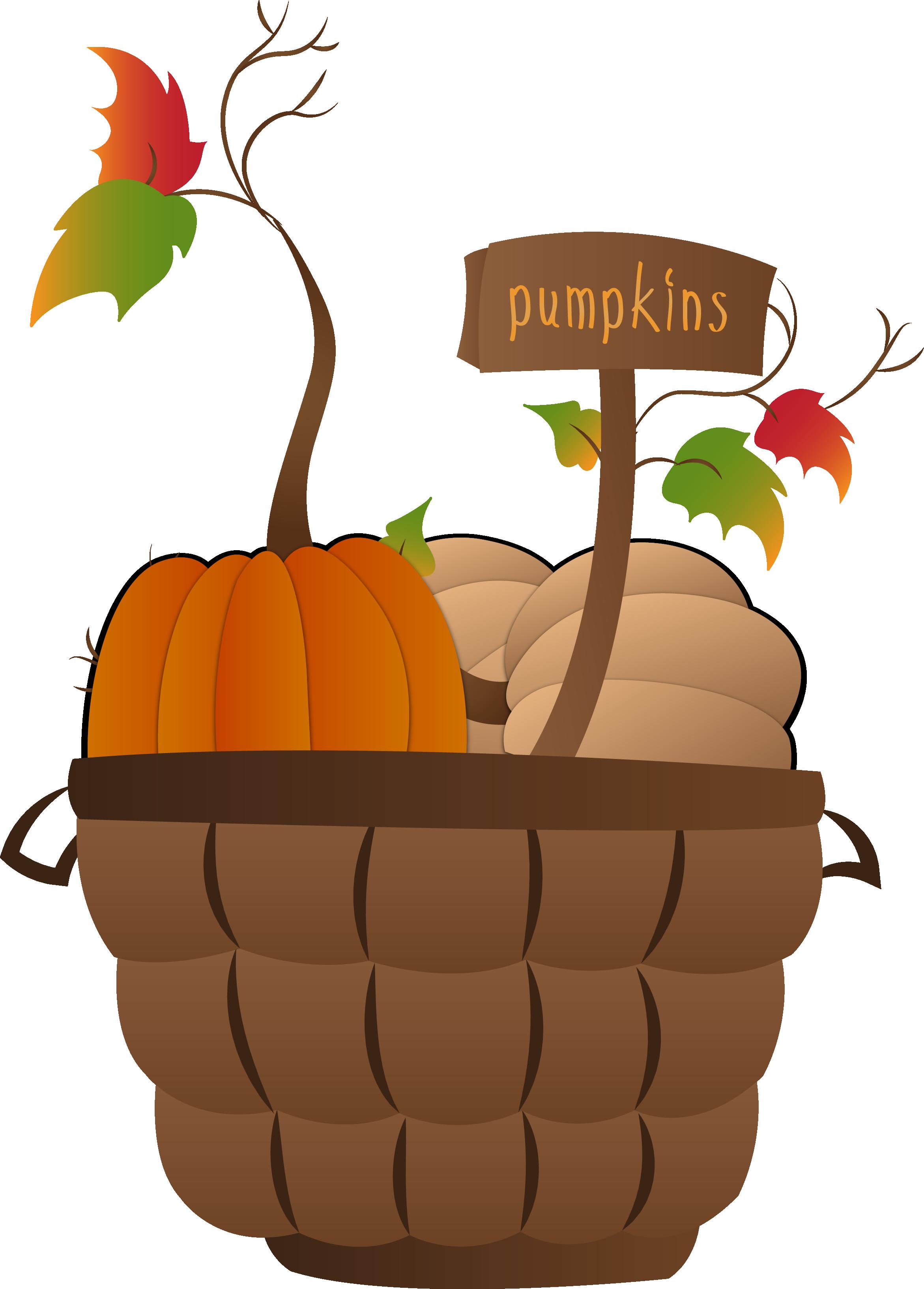 pumpkin basket.