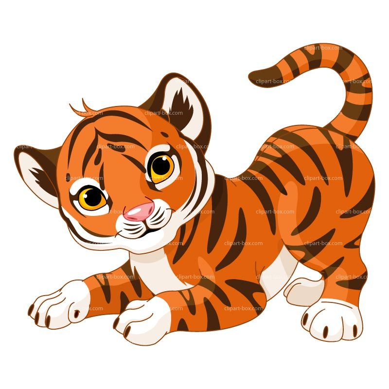 Clipart Baby Tiger Royalty.