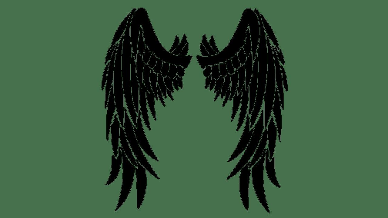 Black Wings Clipart transparent PNG.
