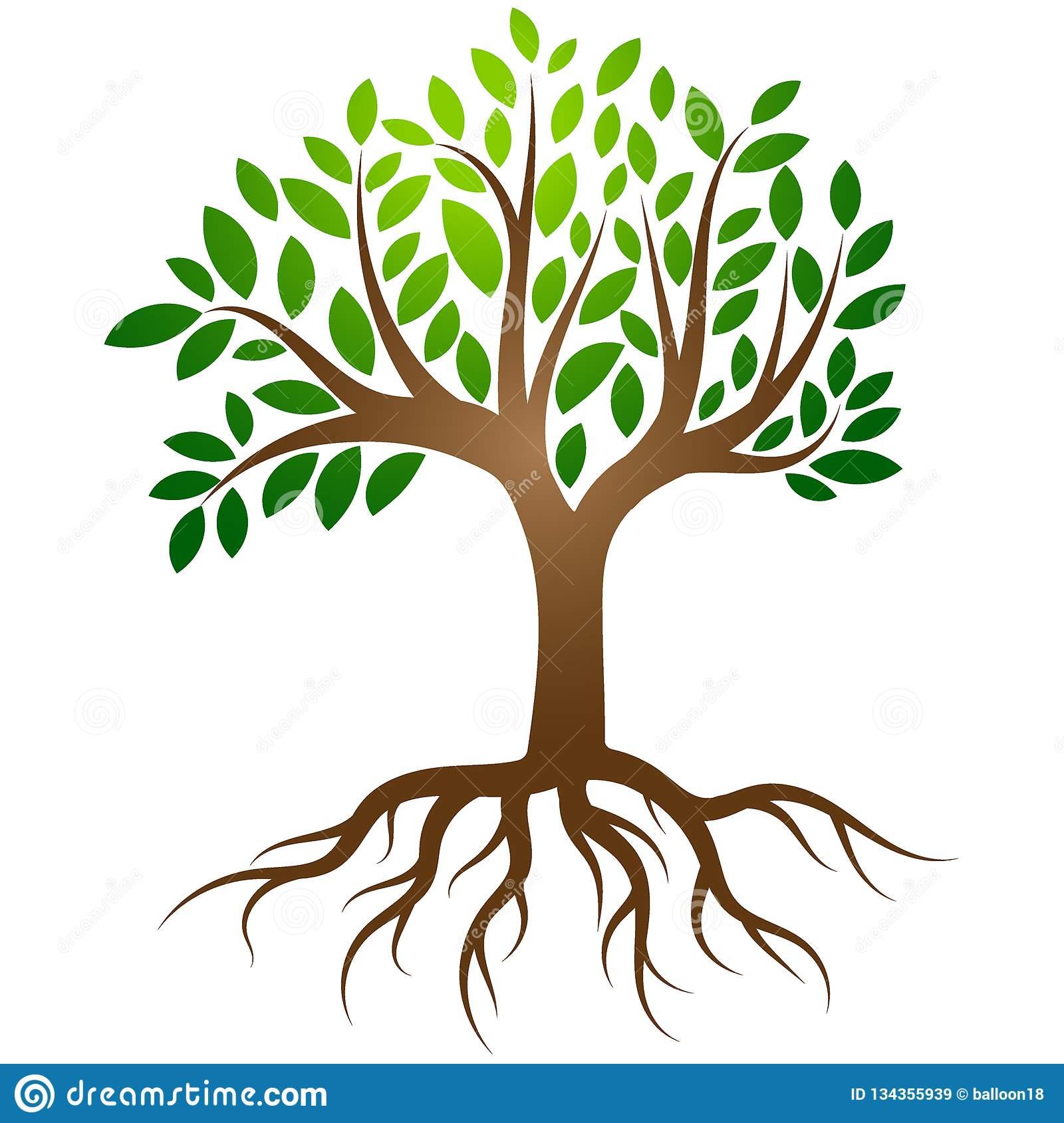 Tree roots logo vector stock vector. Illustration of company.