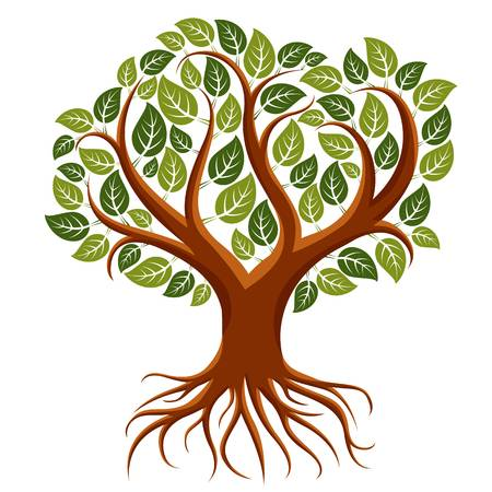 14,998 Tree With Roots Cliparts, Stock Vector And Royalty Free Tree.