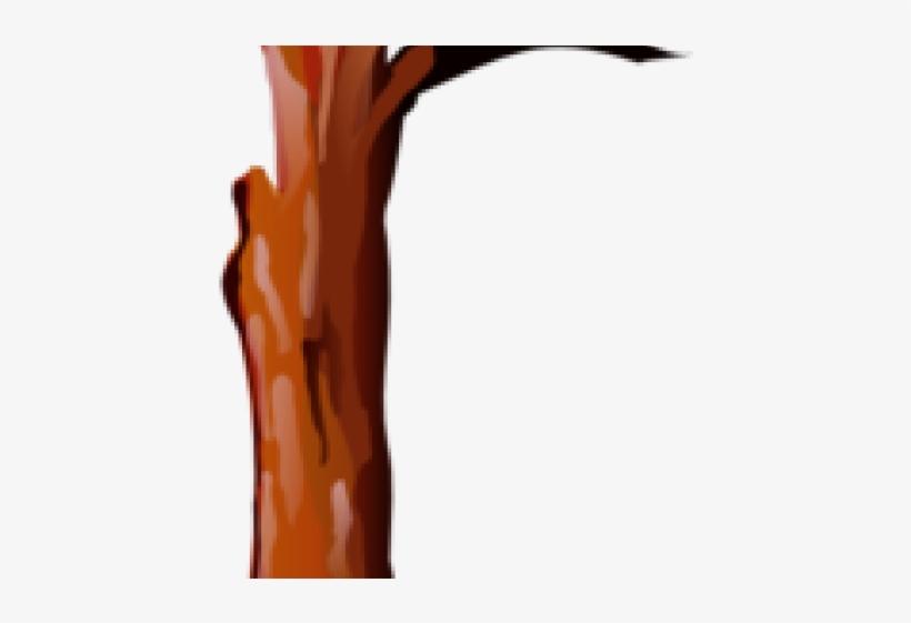 Trunk Clipart Tree Bark.