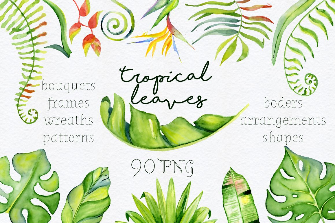Tropical leaves Watercolor clipart.