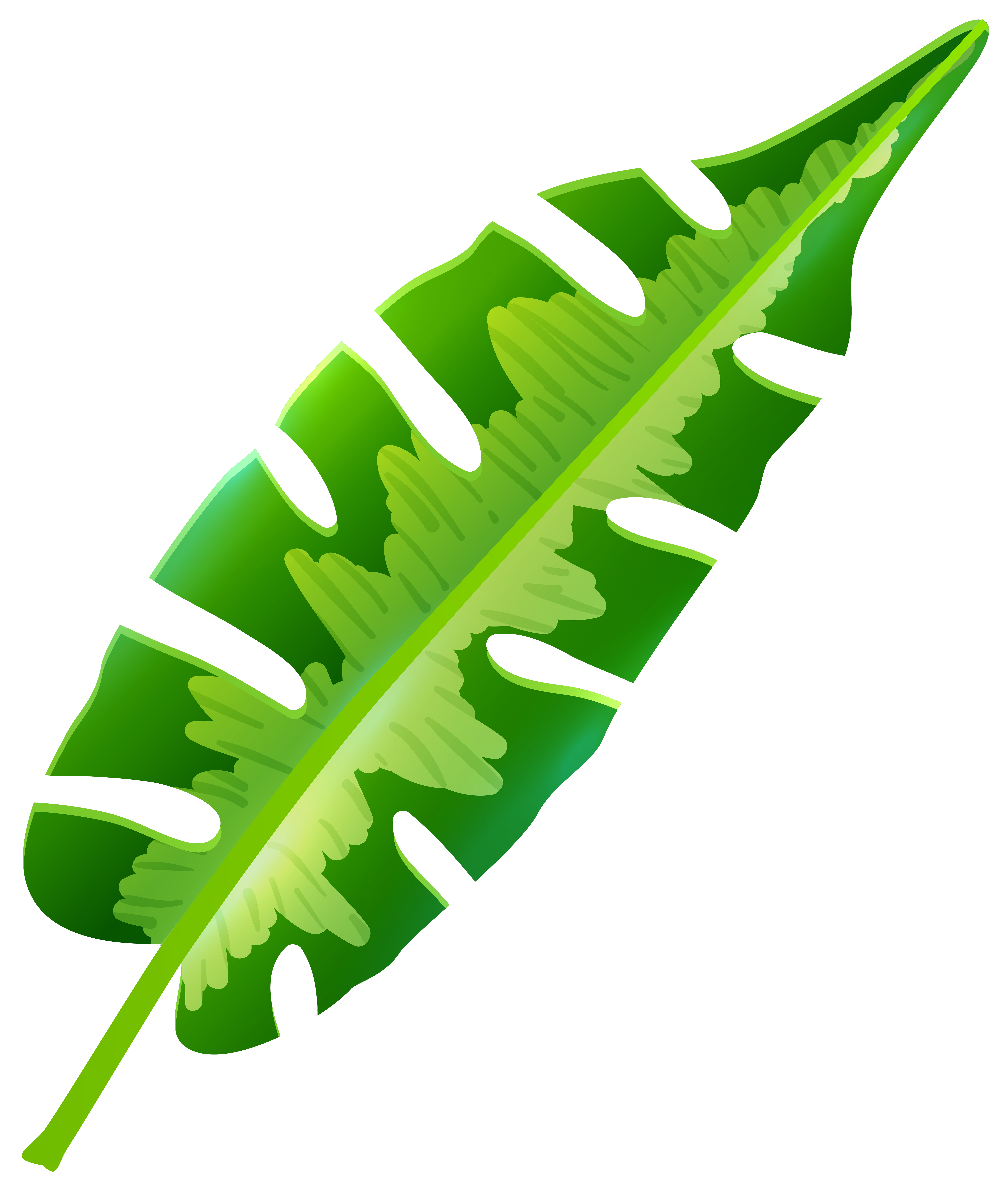 Tropical Leaf Clip Art.