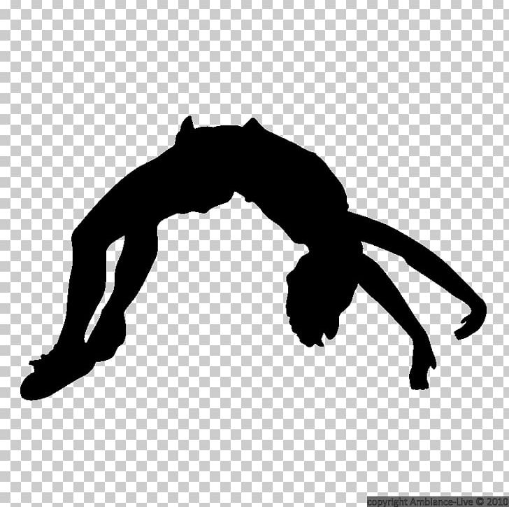 Silhouette Cheerleading Tumbling Gymnastics PNG, Clipart, Arm, Black.