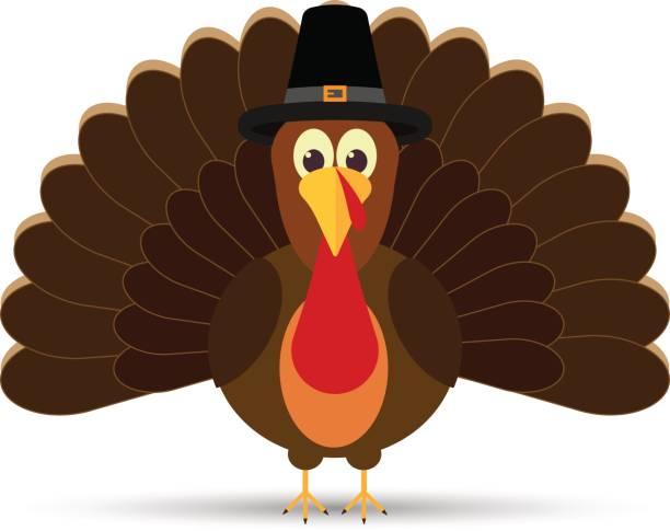 Best Turkey Illustrations, Royalty.