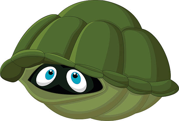 Best Turtle Shell Illustrations, Royalty.