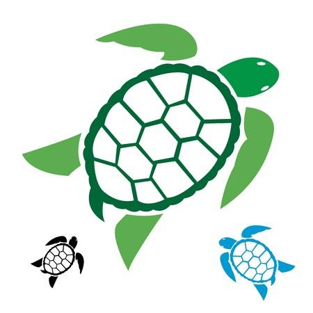 10 135 Sea Turtle Stock Vector Illustration And Royalty Free Regular.