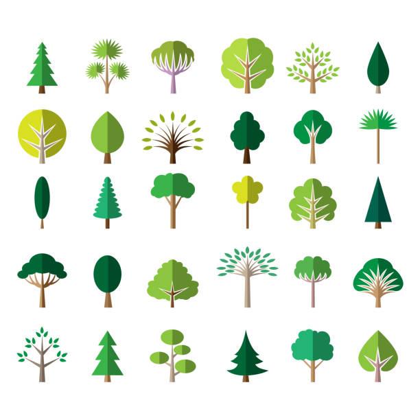 Best Tree Illustrations, Royalty.