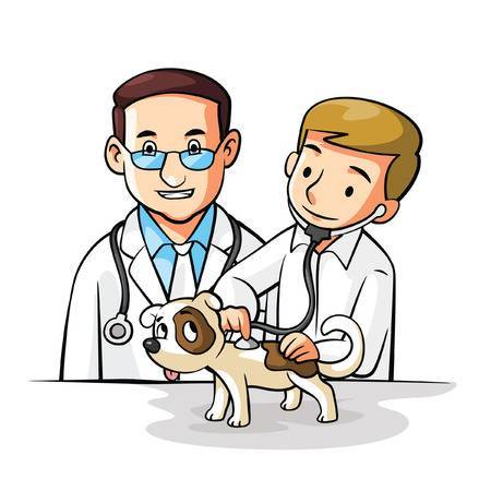 Clipart veterinarian 6 » Clipart Portal.