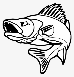 Collection of Walleye clipart.