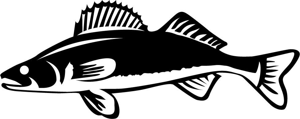 Image result for walleye clipart.