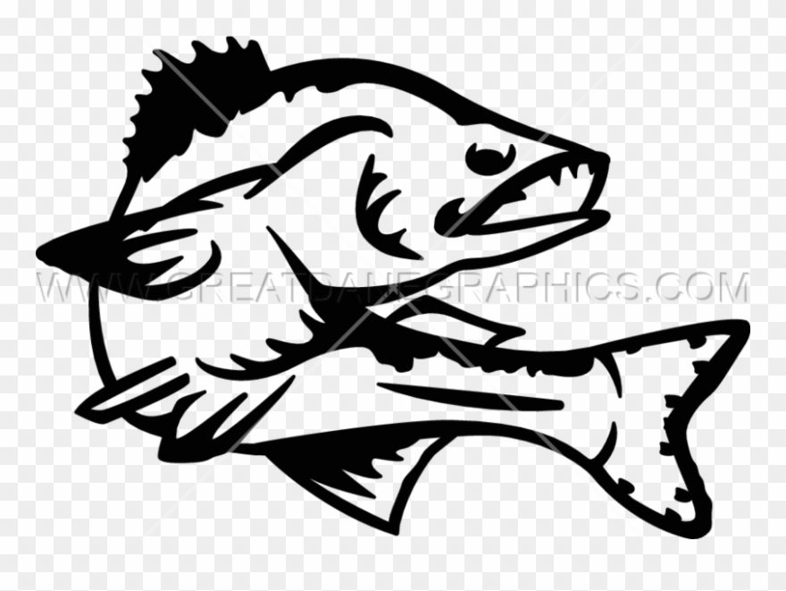 Walleye Vector Clipart Black And White Stock.