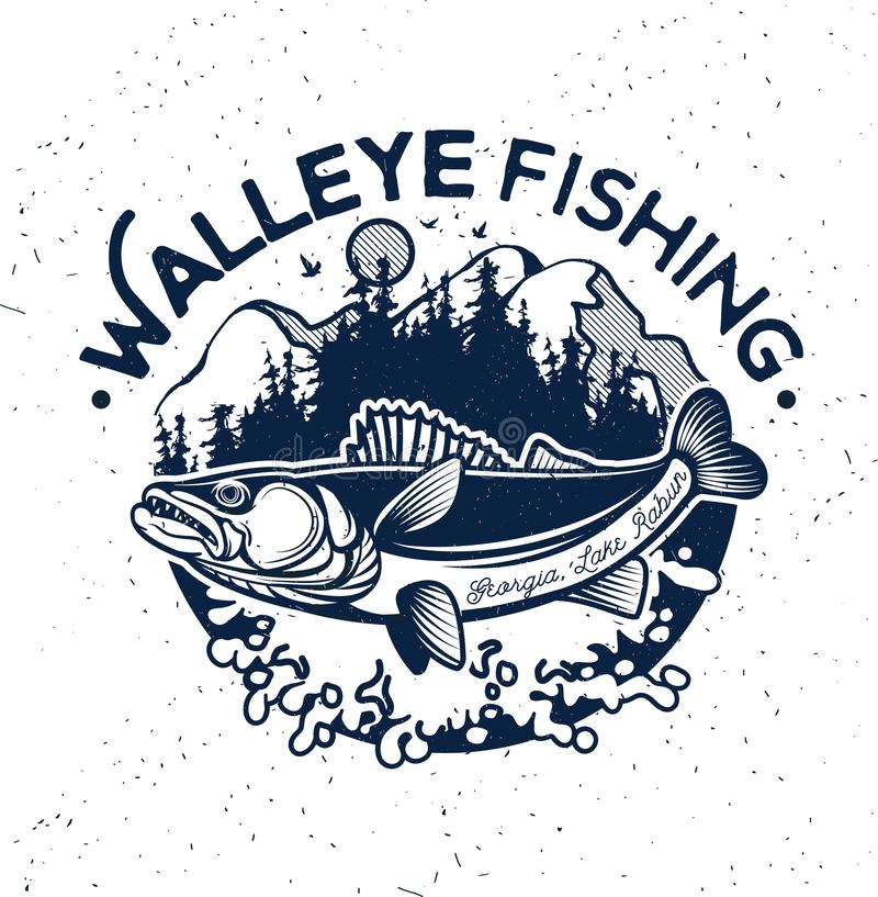 Walleye Stock Illustrations.