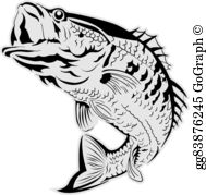 Walleye Fish Clip Art.