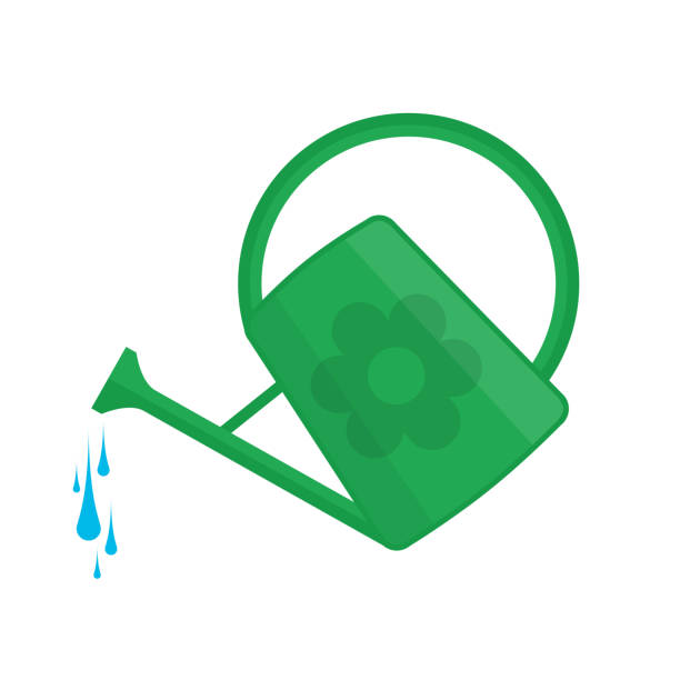 Best Watering Can Illustrations, Royalty.