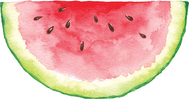 Best Watermelon Illustrations, Royalty.