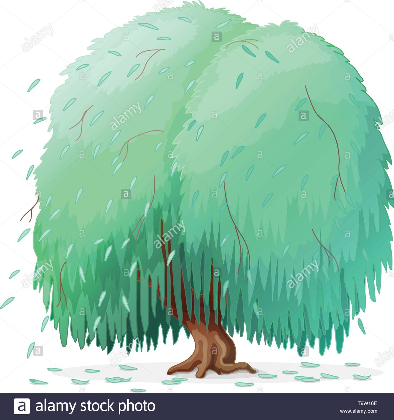 vector cartoon plants clipart. Weeping willow tree Stock Vector Art.