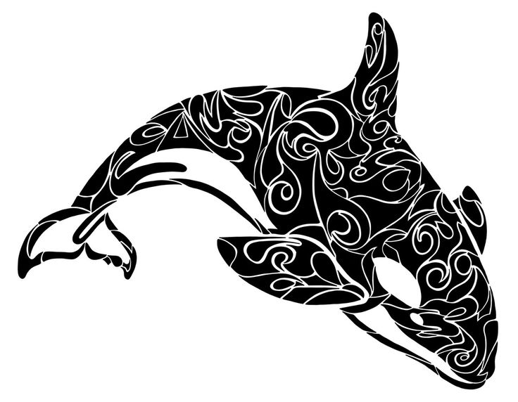 Orca images about whales on watercolors whale tail clipart.