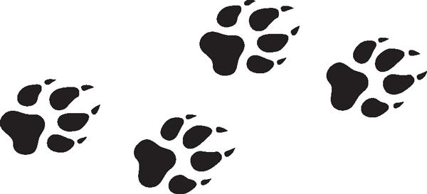Wolf Paw Print Drawing.