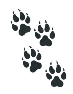 Wolf Paw Print Drawing at PaintingValley.com.