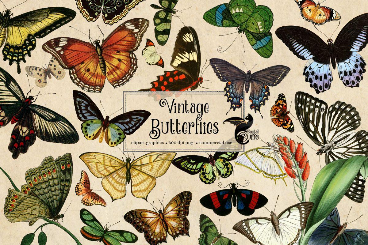 200 Vintage Butterflies Clipart.