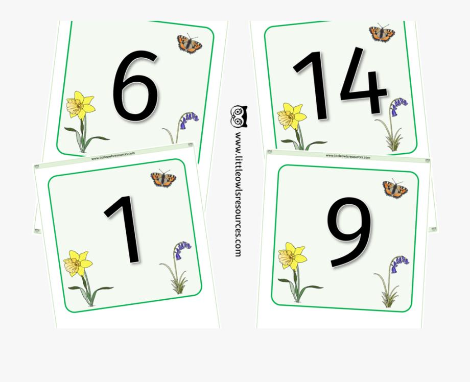 Spring Number Line/flashcards 0.