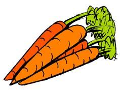 Carrot Clipart Clipart.