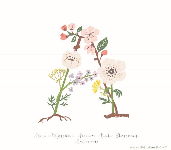 Botanical Alphabet.