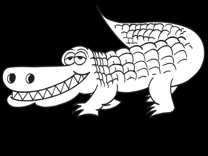 Coloring clipart alligator, Coloring alligator Transparent.