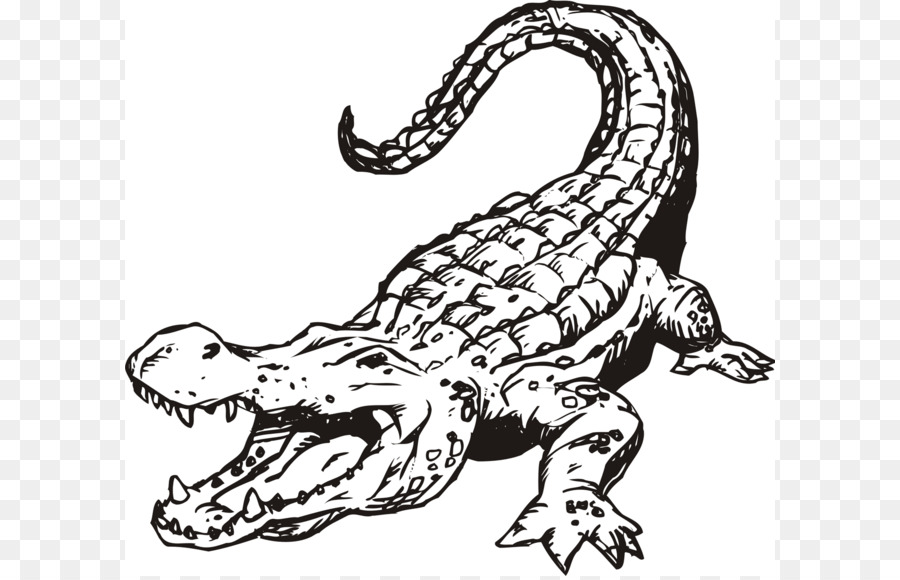 Clipart alligator black and white 3 » Clipart Station.