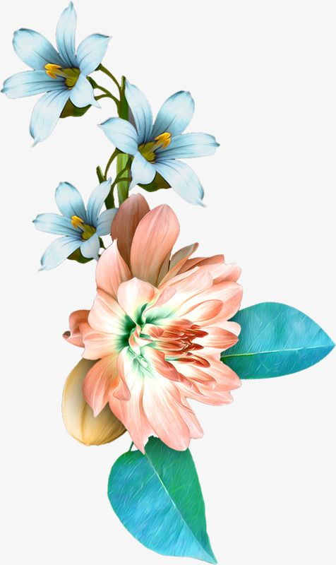 Painted Orchid, Orchid, Hand Painted Flowers PNG Transparent.