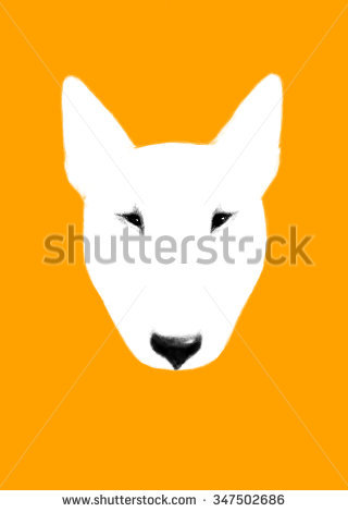 Animal Nose Stock Images, Royalty.