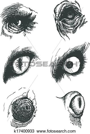 Clipart of Set of vector animal eyes. Hand drawn. Eps8 k17400933.